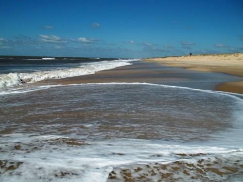 En el fin de semana los uruguayos participaron de una nueva jornada anual de limpieza de costas