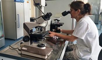 Hospital de Clínicas dispone de laboratorio de microbiología automatizado de vanguardia