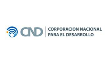 Corporación Nacional para el Desarrollo ejecutó obras públicas por 470 millones de dólares en 2018