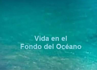 La NASA Estudia Reproducir los Orígenes de la Vida en el Fondo del Océano