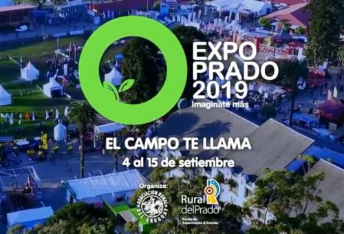 Inicia Expo Prado 2019