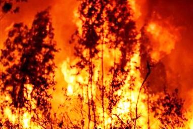Incendio: Se está evacuando el balneario La Esmeralda