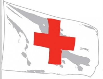 Conferencia de la Cruz Roja y de la Media Luna Roja