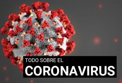 Preguntas y respuestas sobre la enfermedad por coronavirus