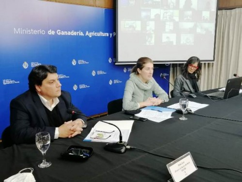 Nueva convocatoria del MGAP a grupos de mujeres rurales aportará hasta 2 mil dólares para cada mujer participante