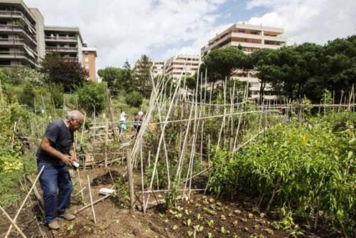 """La FAO lanza la iniciativa """"Ciudades verdes"""""""