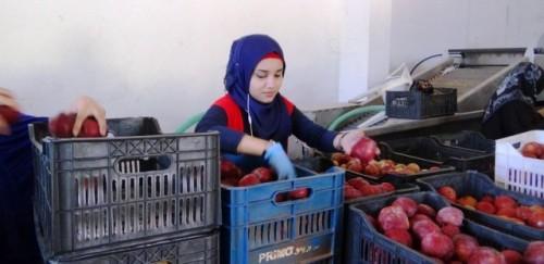 Vinculación de los pequeños productores con los mercados del Líbano