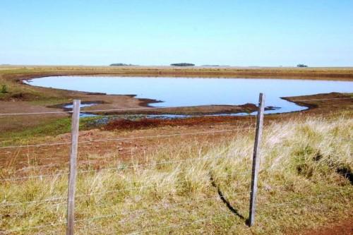 Productores ganaderos y lecheros tendrán financiamiento especial del Banco República para enfrentar emergencia hídrica