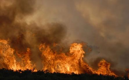 Recomendaciones para prevenir incendios forestales y de campo