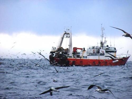 DINARA extiende vigencia de permisos de pesca