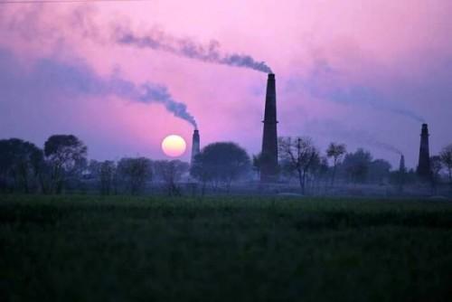 El empeoramiento de la contaminación del suelo amenaza la producción de alimentos y los ecosistemas en el futuro