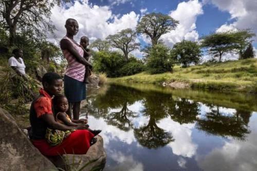 La ONU insta a una intensa restauración de la naturaleza para abordar las crisis climáticas y de biodiversidad