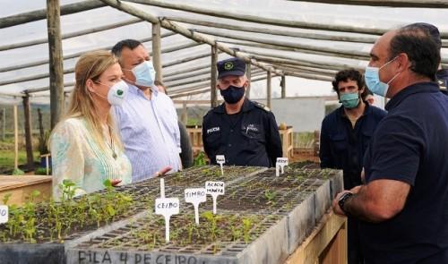 Privados de libertad trabajarán en nuevo invernadero del centro de rehabilitación de Paysandú