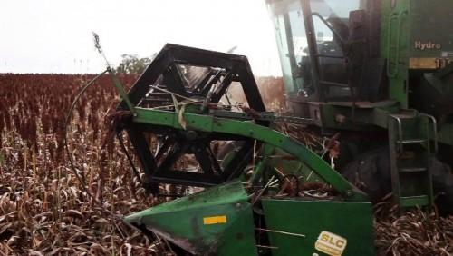 Cámara de Servicios Agrícolas preocupada por obras en el Puente Nuevo sobre el Río Yí